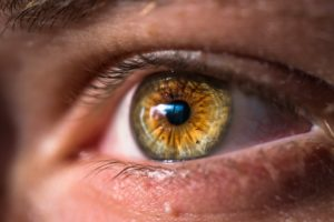 Eye doctor awarded research grant to help save children's sight